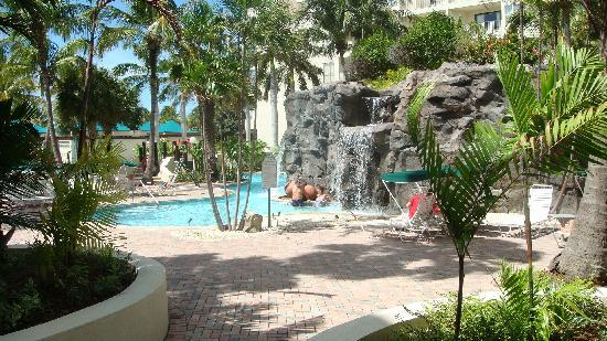 Marriott's Aruba Ocean Club : pool