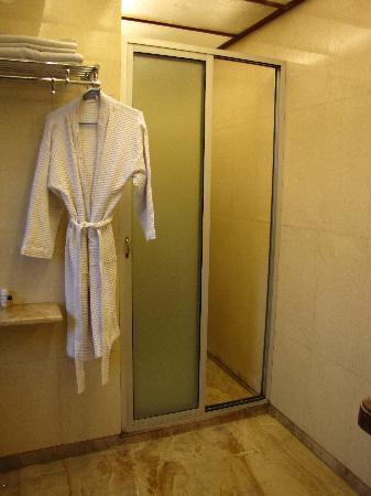 Roland Hotel: the bathroom