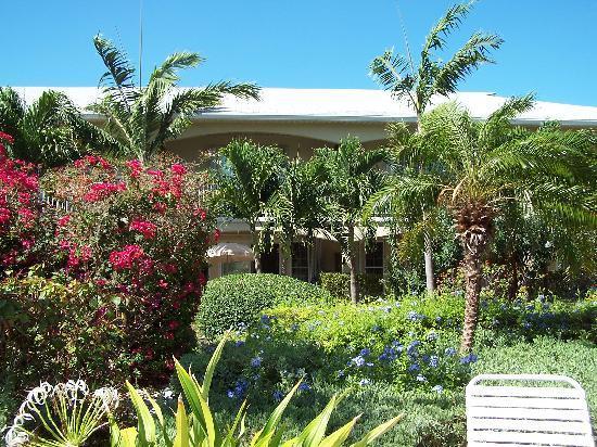 آيلاند كلوب: Taken from the pool looking at our condo