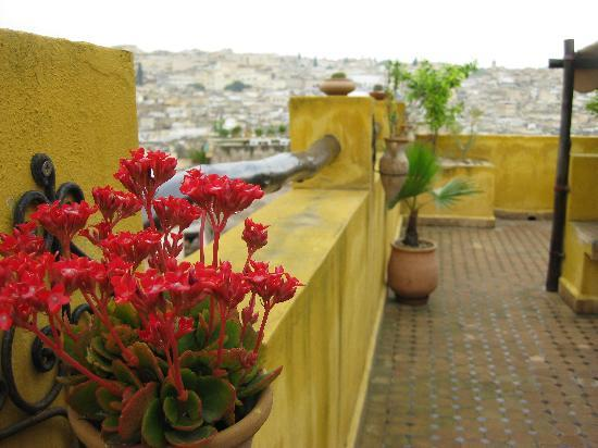 Riad Le Calife: Magnificent View from the Rooftop Terrace