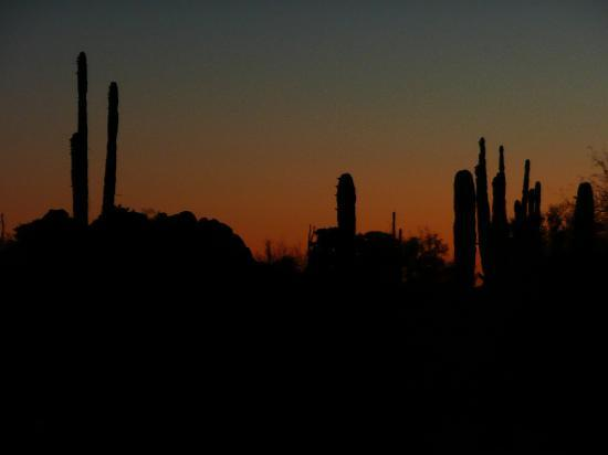 Desert Inn Catavina: view from my room at sunset