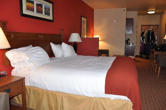 Holiday Inn Express Hotel & Suites: Bed Room View