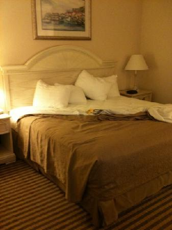 BEST WESTERN Plus Silver Creek Inn: king bed