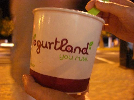 Yogurtland Waikiki Beach : 目一杯入れると食べきれない
