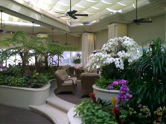 Island Shangri-La Hong Kong : roof-top garden