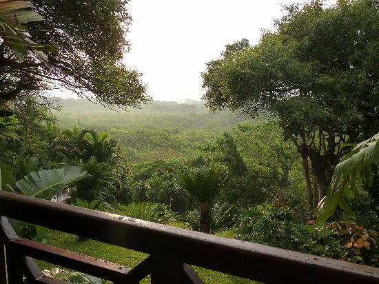 St Lucia Eco Lodge and Conference Centre: view from Unit 3 - ocean in the distance - you can hear it and see it through the vegetation