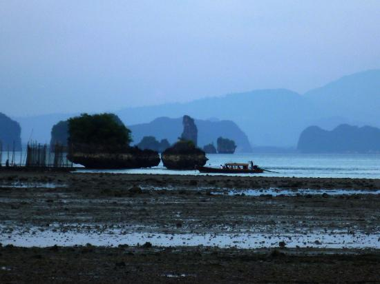 Paradise KohYao: Low tide view