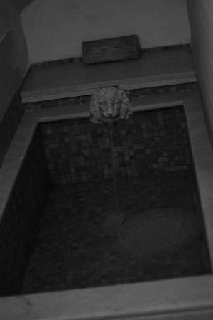 Palazzo Maggiore: Roman bath