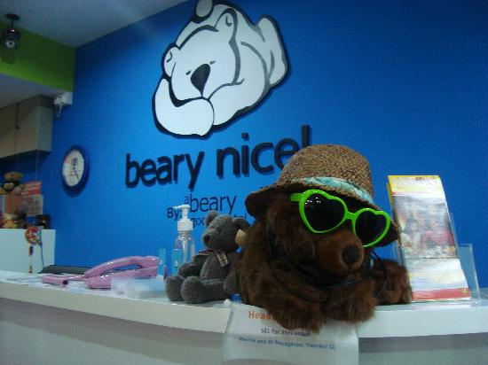 Beary Nice! by a beary good hostel: check-on counter