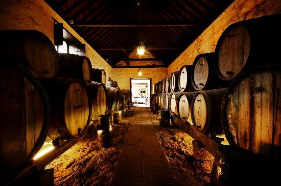 Santa Brigida, Spanien: Bodega