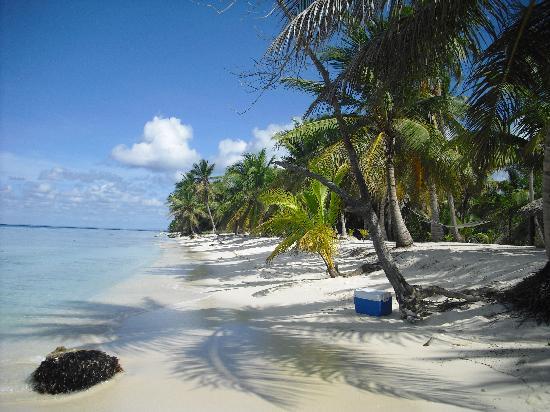 Bayahibe, République dominicaine : saona