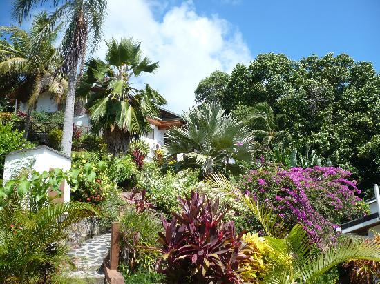 Chalets Cote Mer: giardino favoloso