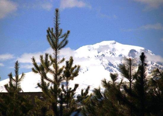 Glenwood, WA: Mt Adams in the winter