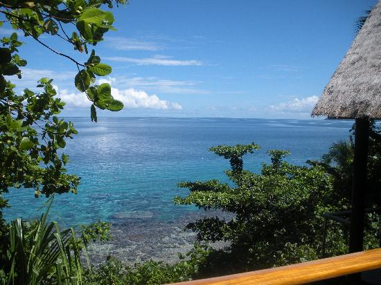 Royal Davui Island Resort: View from our Villa!