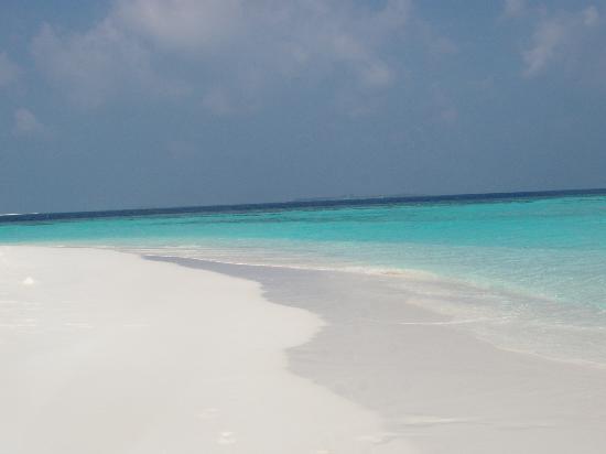 Maafushivaru: spiaggia lonubo