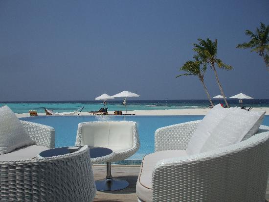 Maafushivaru: bar , piscina e spiaggia