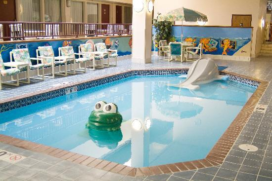Plaza Hotel and Suites: Kiddie Pool