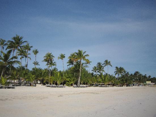 IFA Villas Bavaro Resort & Spa: vue de la plage