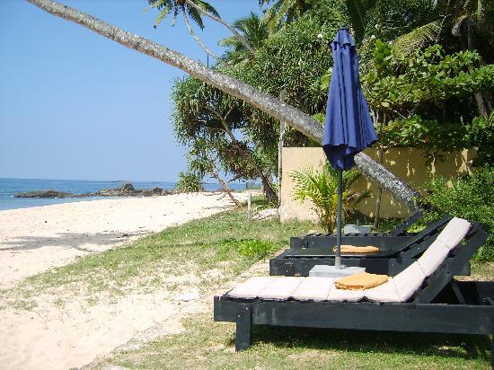 Amanda Beach Villa : Sunbeds