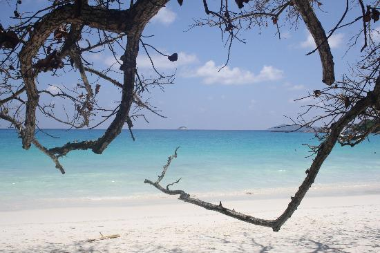 Domaine de La Reserve: Praslin, Anse Lazzio
