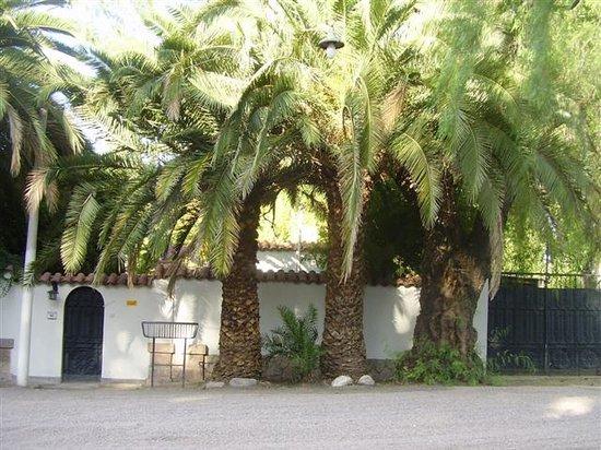 Posta Benegas: Entrada con tres grande palmeras