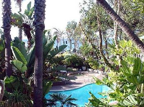 Laguna Reef Condominiums 사진
