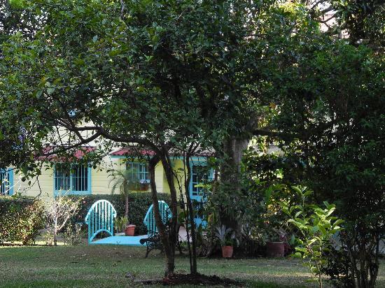 Casa de las Tias: lovely garden