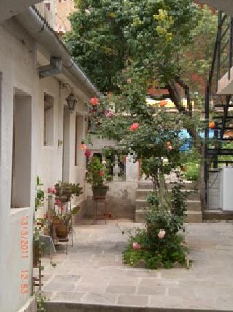 El Zaguan : el patio