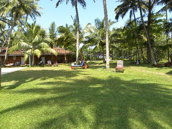 Club Bentota: Hotel Grounds