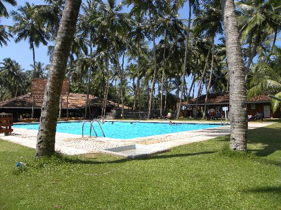 Aluthgama, Sri Lanka: Hotel Pool