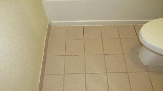 Quality Inn & Suites Canton : Bathroom Floor