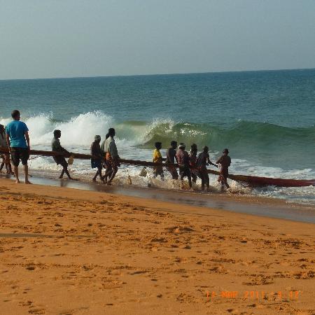 Palmleaves Beach Resort : jeden Morgen frischen Fisch....