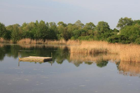 Youth Hostel Remerschen: Natural reserve in late afternoon