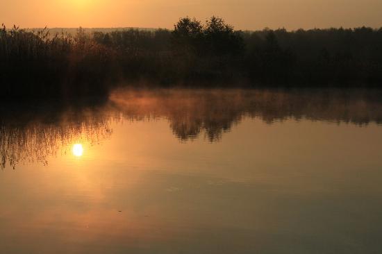 Youth Hostel Remerschen: Natural reserve at dawn