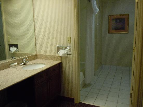 Homewood Suites by Hilton Reading: bathroom and vanity area