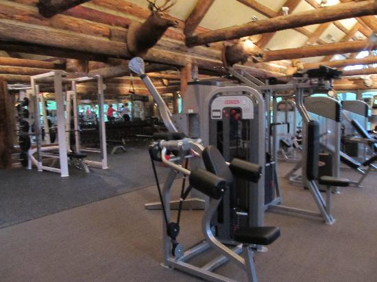 Ridgedale, มิสซูรี่: Big Cedar Lodge Fitness Center