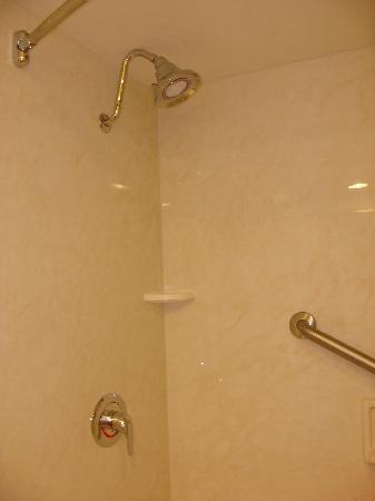 Crowne Plaza Hotel Louisville-Airport KY Expo Center: Clean shower with grab bar