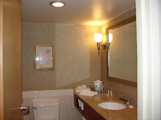 Holiday Inn Hotel & Suites Cincinnati-Eastgate: Another view of the bathroom