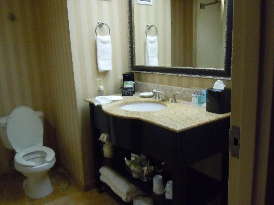 Hampton Inn Altoona : Bathroom