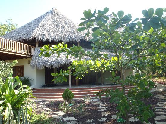 Mango Rosa Nicaragua : Base Camp