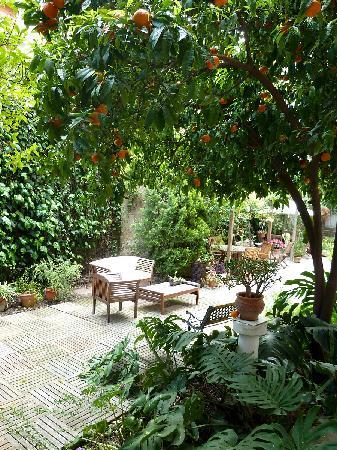โรงแรมไนซ์การ์เดน: The gorgeous garden