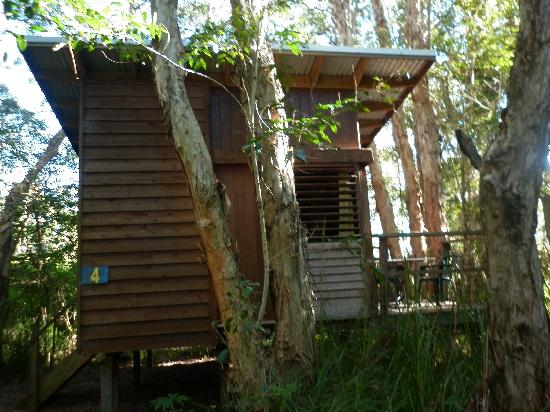 Melaleuca Surfside Backpackers: Home away from home
