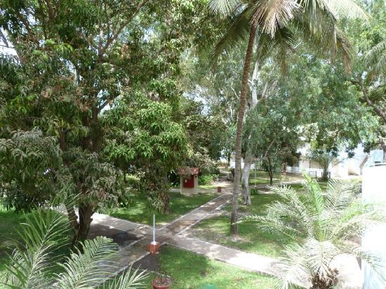 Senegambia Beach Hotel: Hotel Ground