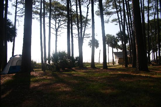 Hunting Island State Park Campground: Looking out towards the ocean from site #60