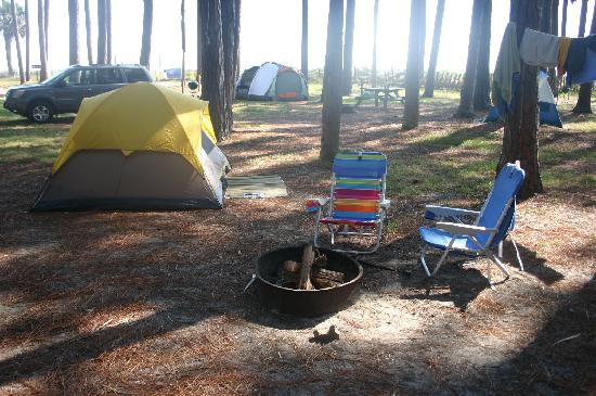 Hunting Island State Park Campground : Looking out towards the ocean from site #60