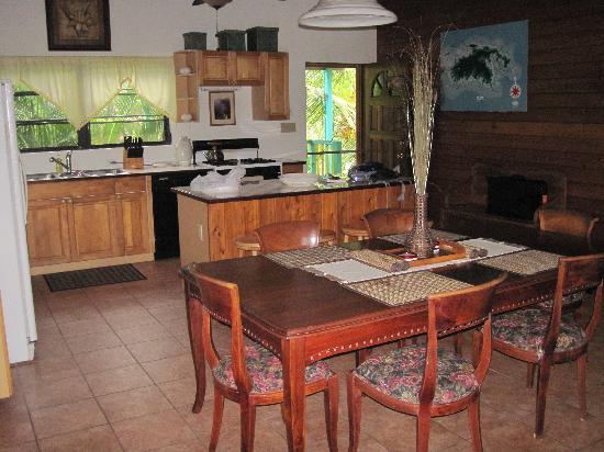 Starlit Escape Villa : great kitchen area