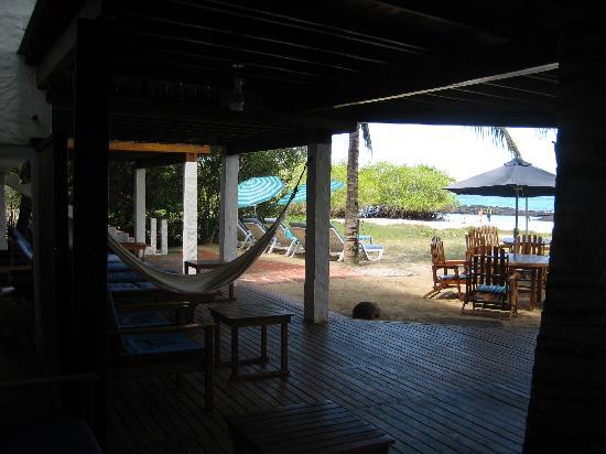 La Casa de Marita: beach-front deck