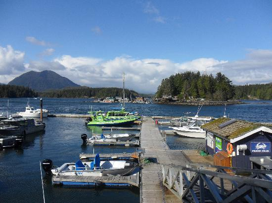 Discover Canada Tours: View from the hotel. Beautiful Tofino.