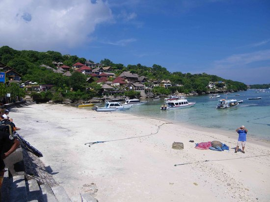 Nusa Lembongan, Indonesien: Coconut beach from boat office