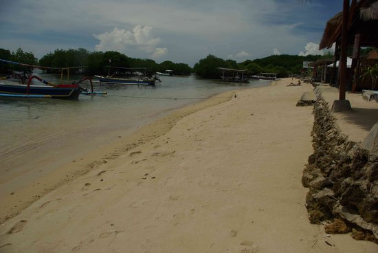 Nusa Lembongan, Indonesien: Beach near Mangroves
